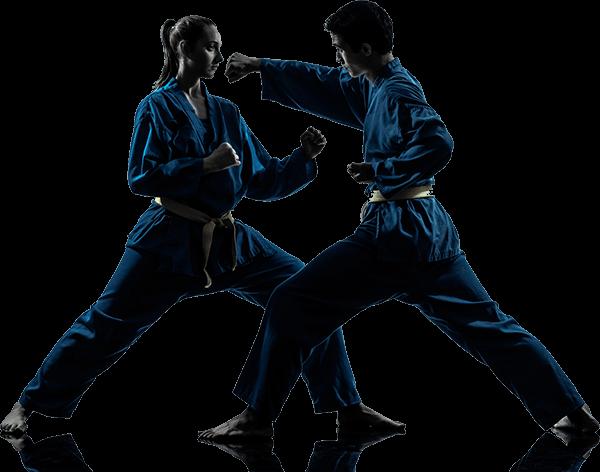 Adult Martial Arts 113